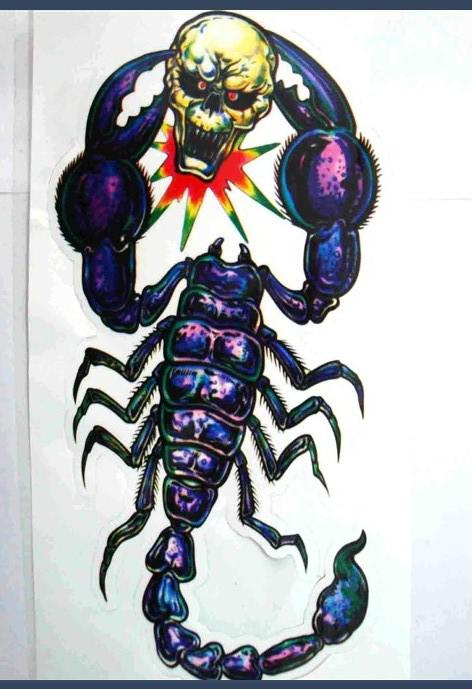 Horrific Spider And Skull Stickers Decals For Car Motorcycle Cm - Skull decals for motorcycles