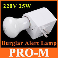 Wholesale 220V W Voice Controlled Electronic Burglar Alert Lamp Auto Induction Security Light Safety Lamp
