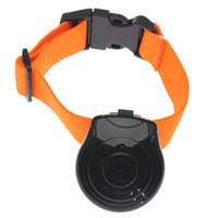 Wholesale 10 New Cat Dog Pet Collar Digital USB Photo Camera Pet Eye View Pet Camera Video