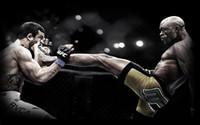 One Panel anderson silva - Anderson Silva UFC Kick Silk Poster inch