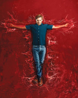 Wholesale Dexter Season TV Star Michael C Hall Wall Silk Poster