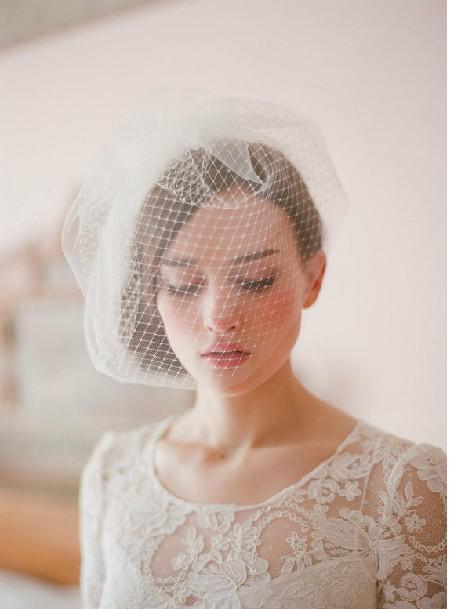 Face Wedding Photo Face Veil Birdcage Wedding