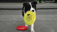 Wholesale 20cm cm flexible Dog Frisbee discs Toy Great For Playing Catch Fetch Pet toy