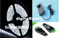 Wholesale led strip light SMD M Coo white waterproof flexible led M With connector With V A power supply US EU plug warm white use directly