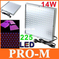Wholesale Quad band W Led Lamp Plant Grow Light Planel Led Glow Lighting