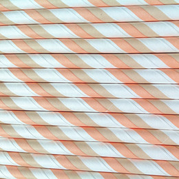 Wholesale Coral amp Tan Striped Paper Party Drinking Straws C C