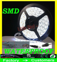 Wholesale 5M Bright Ultra White SMD high power W Warm white cool white blue red green Waterproof Flexible LED Strip Light with connector