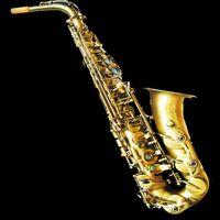Wholesale Alto Saxophone cost