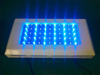 Wholesale 120W W LED Aquarium Light freeship by Fedex High PAR Royal Blue Bridgelux Led ree