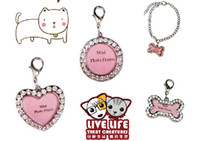 Wholesale new bone round heart style Alloy Pet Dog Cat ID Card Tags Necklace mini photo frame Keychain