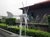 5 generator - 300w hyacinth wind generator full power windmill wind turbine high quality CE ROHS ISO