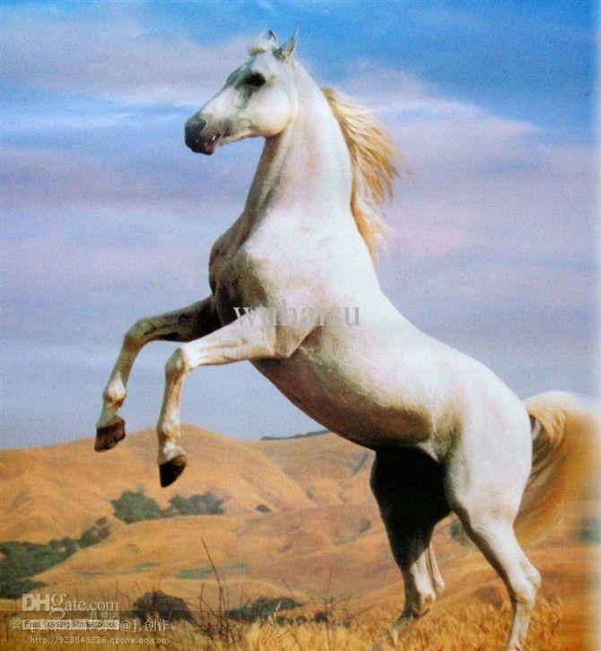 Oil Paintings Of White Horses | www.pixshark.com - Images ...