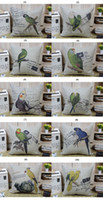 Wholesale Beautiful Vintage Bird Parrot pattern cushion cover throw pillow case