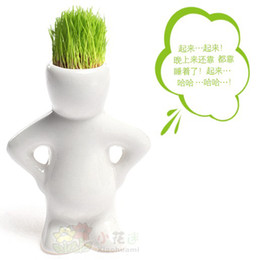 Wholesale DIY Creative Gift Plant Hair man Plant Bonsai Grass Doll Office Mini Plant Fantastic Home Decor pot