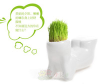 Wholesale Creative Gift Plant Hair man X lover Plant Bonsai Grass Doll Office Mini Fantastic Home Decoration