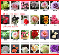Wholesale Free Fast Shipping Color Rose Seeds more Roses Colorful Flower plant seeds