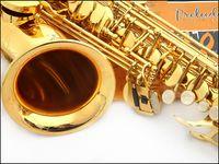 Wholesale NEW Salma E flat alto saxophone electrophoresis gold playing professionally