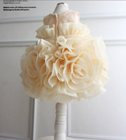 TuTu Summer Pleated 2013 baby children girls princess dress big flower dresses TUTU skirts birthday gift