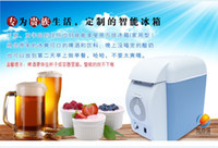 Wholesale Hot Sell In Summer High Quality V L MINI Freezer Icebox Cold Heat Car Refrigerator