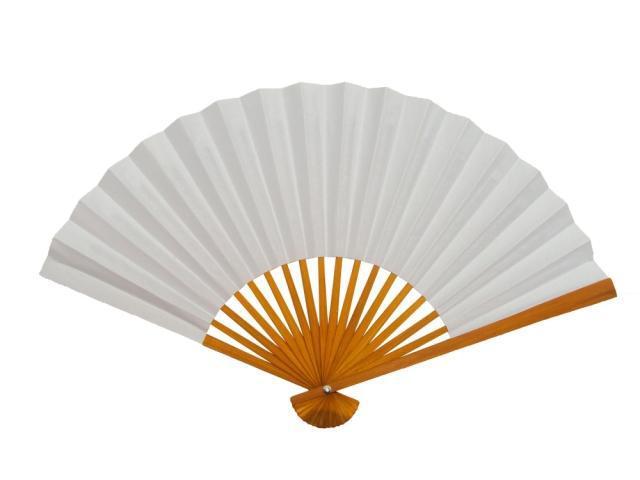 blank white paper fan diy program painting folding