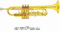 Wholesale Brass Wind Music Instrument Trumpet TR Bb key Spray Vanish Brass Bell