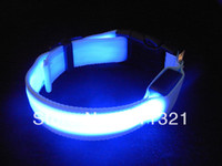 Glow collar del gato del perro casero LED Flashing Light Up Seguridad collar de perro luminoso del LED 6 colores tamaño SML envío libre