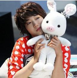 Wholesale 55cm Cleanrance High quality Pig Rabbit Doll SBS Drama quot u r so beautiful