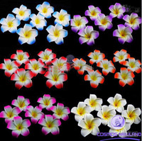 Wholesale inch Hawaiian Plumeria Foam Flower Hair Clips colors mixed zxcdsa