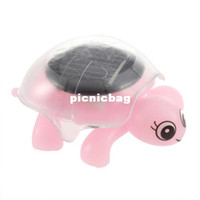 Wholesale Solar turtle novelty toys children educational and lovely mini turtles crawling turtles