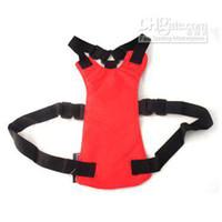 Wholesale Bulk Brand New Black Blue Red Car Seat Safety Belt Seatbelt Dog Cat Pet Free Shi