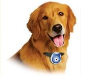 Wholesale Digital Camera PETS Eye View Dog Puppy Kitten Cat Pet Collar Automatic USB Photo