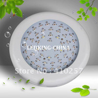 Wholesale unique design UFO LedGrow light W W W Epistar chip years warranty HIGH QUALITY D