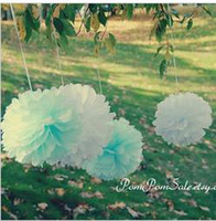 Wholesale Fress Shipping cm Tissue Paper Pom Poms Wedding Party festival decor colors