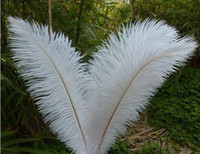 Wholesale 100 white quality natural inches ostrich feathers A001