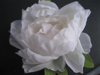 Wholesale WHITE Artificial Simulation Silk Camellia Fabric Imperial Royal Peony Flower cm Diy Brooch Headwear color