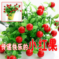 Wholesale New high simulation plant artificial flowers artificial flowers plastic flowers of rich fruit red berries eucalyptus fruit