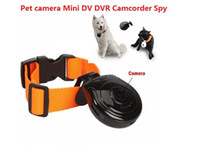 Wholesale Auto Digital LCD USB Pet s Eye View Camera Dog Cat Puppy Pet Collar Camcorder