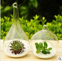 Wholesale Fashion brief transparent handmade glass vase hydroponics vase at home decoration