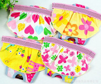 Wholesale Lowest Price Coloful Pet Sanitary Shorts Female Dog Diaper Animl Underwear Short Pants Lovely Random Color Sizes pc