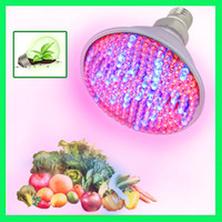 Wholesale E27 RED and BLUE LED W Hydroponic Plant Grow Growth LED Light Bulb V