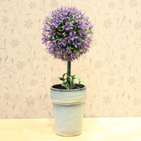 other   Ziwei tree bonsai mini bonsai artificial bonsai flower pot bowyer flower plant bonsai