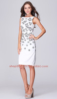 Wholesale 2013 New HOT Women s Fashion Dresses Simple temperament embroidery thin Slim Elegant Women s Work dress