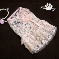 Wholesale Pet products Dog Lace Dress for Spring Cheap