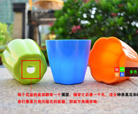 Wholesale Retail High quality Plastic Planters balcony gardening mini candy colored pots for home decorative