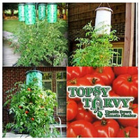 Wholesale New Arrivals Topsy Turvy Tomato Vegetable upside down Planters