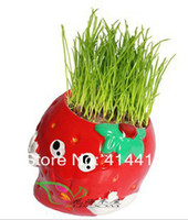 other   8 pcs Mini DIY Strawberry Grass Dolls Cartoon Micro Plant Ceramic Doll Grass Cultivation Plants Home Decoration