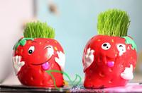 other   20 pcs Mini DIY Strawberry Grass Dolls Cartoon Micro Plant Ceramic Doll Grass Cultivation Plants Home Decoration
