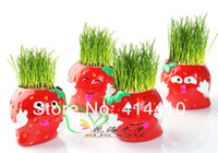 other   4 pcs Mini DIY Strawberry Grass Dolls Cartoon Micro Plant Ceramic Doll Grass Cultivation Plants Home Decoration