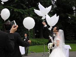 Wholesale 300pcs Dove balloons only support hydrogen White biodegradable balloons wedding decoration
