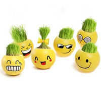 Wholesale Free EMS DIY Fantastic Gift Mini Plant Cut Hair man Grass doll Bonsai face expression office Home Decoration Decor pot Purify air